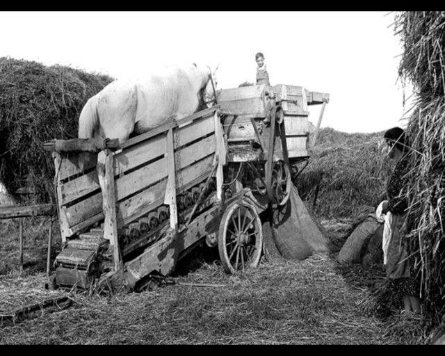 La vie à la campagne avant .... 805uyhmj