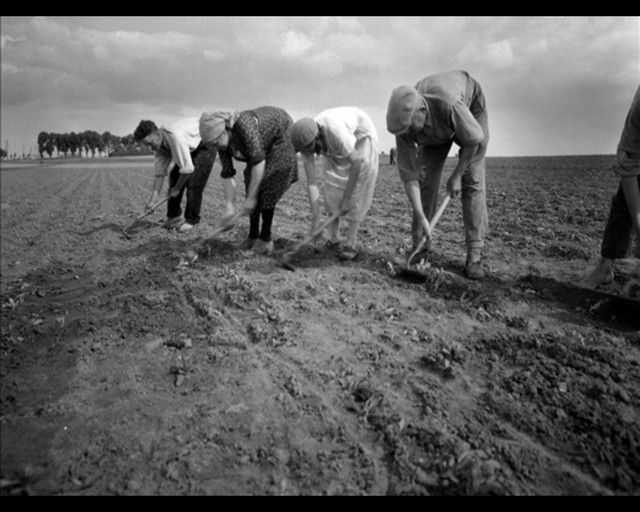 La vie à la campagne avant .... Qdyvpnh6