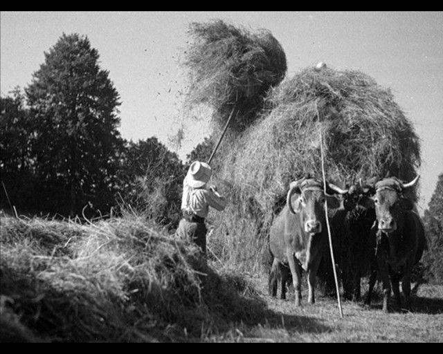 La vie à la campagne avant .... Xrz8t0jt